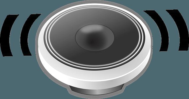 smart speakers popular echo google home